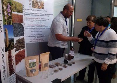 2015-I Conferencia- Valencia